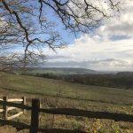 Cuxton View